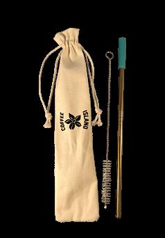 Reusable Metal Straw (Gold - Aqua)